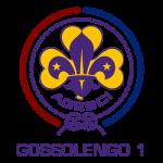 Logo Gruppo